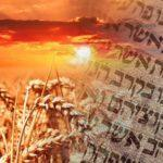 Shavuot:  A New Creation People